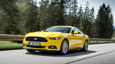 Ford Mustang picture 1